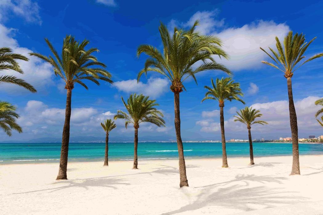 Reward trip to the Balaeric Islands